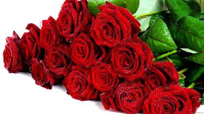 цветы на юбилей девушке
