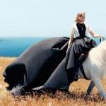 В чем встречать 2014 год лошади?